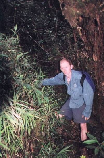 Glen in the jungle