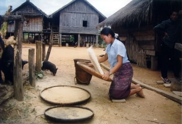 Girl throwing rice